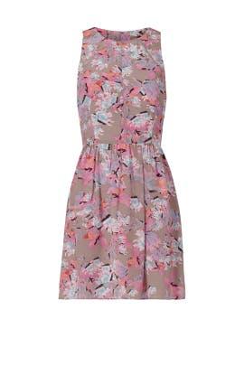Mai Tai Time Dress by Rebecca Taylor