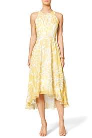 Paradiso Dress by Badgley Mischka