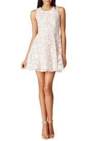 Tori Garden Dress by Jay Godfrey for 30 50 Rent the Runway