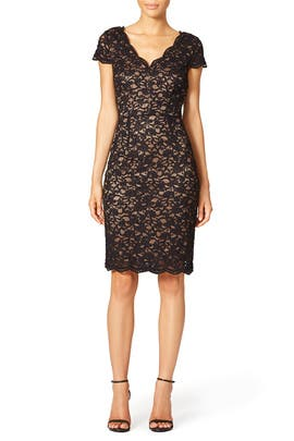 Diamond Lace Dress by Laundry by Shelli Segal