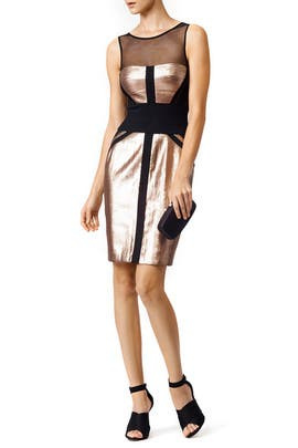 Wrapped in Rose Sheath by BCBGMAXAZRIA