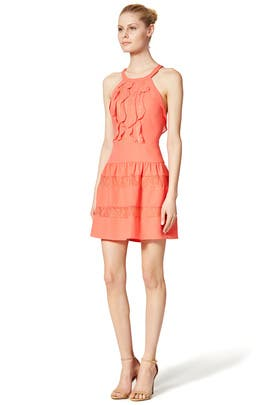 Lianne Dress by BCBGMAXAZRIA