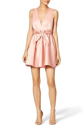Roses Dress by Rachel Zoe