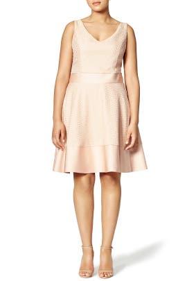 Blush Circle Dress by nha khanh