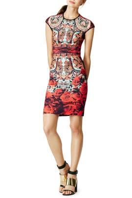 Clover Canyon - Rose Matador Dress