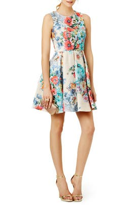 Voltaire Dress by Cynthia Rowley
